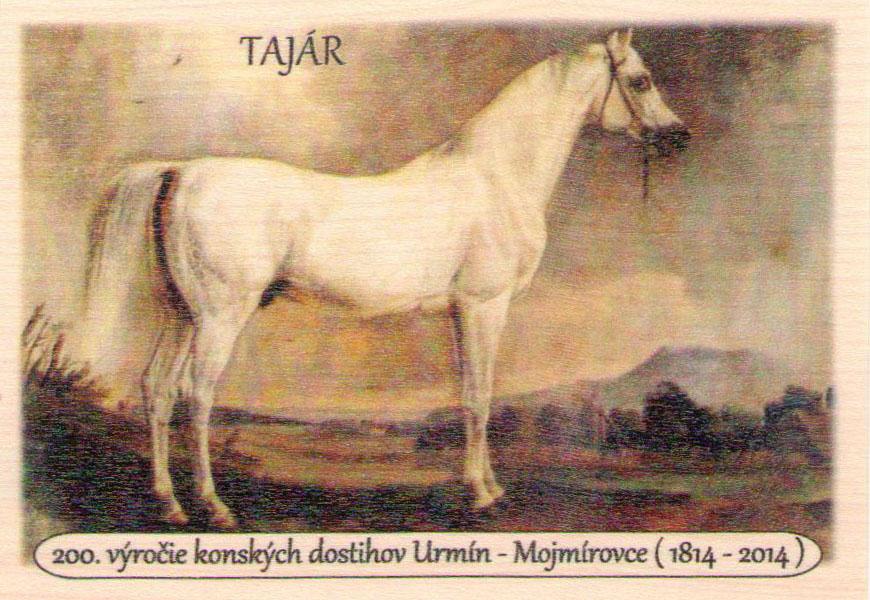 Vyobrazenie koňa Tajára