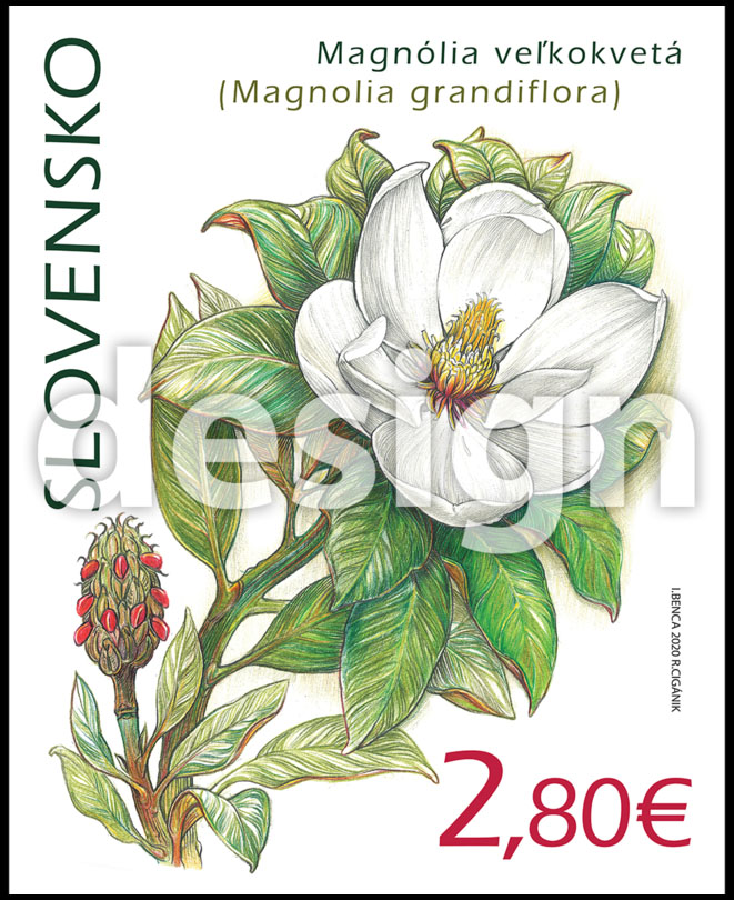 Postage Stamp Nature protection: Botanical Garden UPJS in Kosice - Magnolia grandiflora (Original artwork(s))