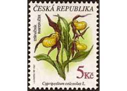Flora in thematic philately - King of Kings - Lady`s-slipper orchid