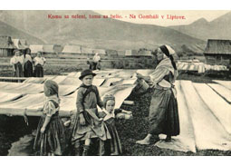 Little school of deltiology (7): Collecting postcards in the past