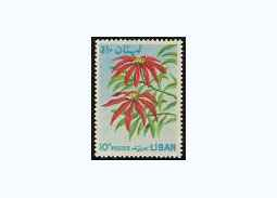 Flora in thematic philately - Christmas Star poinsettia