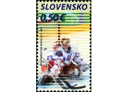 Majstrovstvá sveta vľadovom hokeji 2011 - Brankár